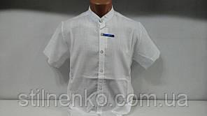 Молодежная рубашка   VIP STENDO