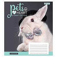 Тетрадь 1вересня 12 листов клетка Pets heart