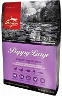 Orijen (Ориджен) Puppy Large Breed Корм для щенков крупных пород 11,4 кг