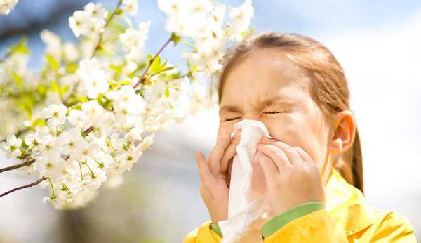 Аллергия, поллиноз и способы борьбы с ними
