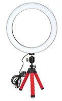 Набор блогера 2 в 1: штатив с зажимом для телефона, кольцевая LED лампа 26 см (светодиодное селфи кольцо)