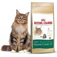 Корм Royal Canin для Мейн Кунов Роял Канин Maine Coon Adult 10 кг