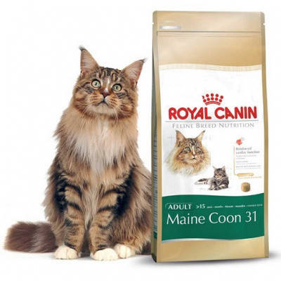 Корм Royal Canin для Мейн Кунов Роял Канин Maine Coon Adult 10 кг, фото 2