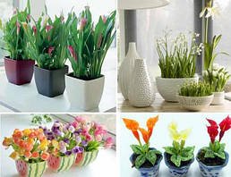 Горщики, вазони і вази для квітів