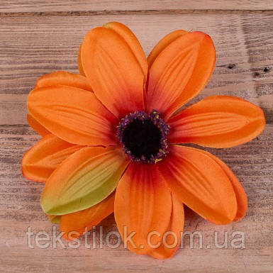 Головка далии оранжевая
