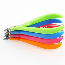 Ногти Clipper Пластиковые ручки из нержавеющей стали Shell Ножницы красоты щипцы для мертвой кожи - 1TopShop, фото 2