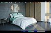 Комплект постельного белья  ранфорс BalakHome евро размер Arrow gray