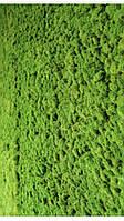 """Стабилизированный мох """"Ягель"""" ярко-зеленый 20г, фото 1"""
