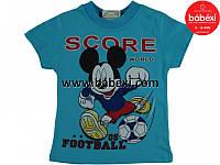 Детская одежда из Турции оптом. Футболка  для мальчика р.2,4,8 лет.