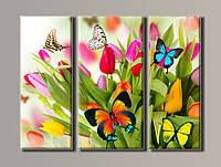 """Картины модульные """"Бабочки на тюльпанах"""" HAT-036"""