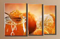 """Картина модульная на холсте """"Апельсиновый джем""""HAT-037"""