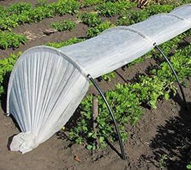 Супер ПАРНИК - 3м длина Теплица, мини-теплица, плотность агроволокна 42 гр/м2 \Теплиці, парники, міні-теплиця