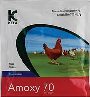 Амоксицилін 70% 1 кг порошок для орального застосування (амоксицилін 70%)  Кела (Бельгія)