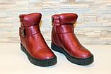 Ботиночки женские бордовые Д560, фото 3