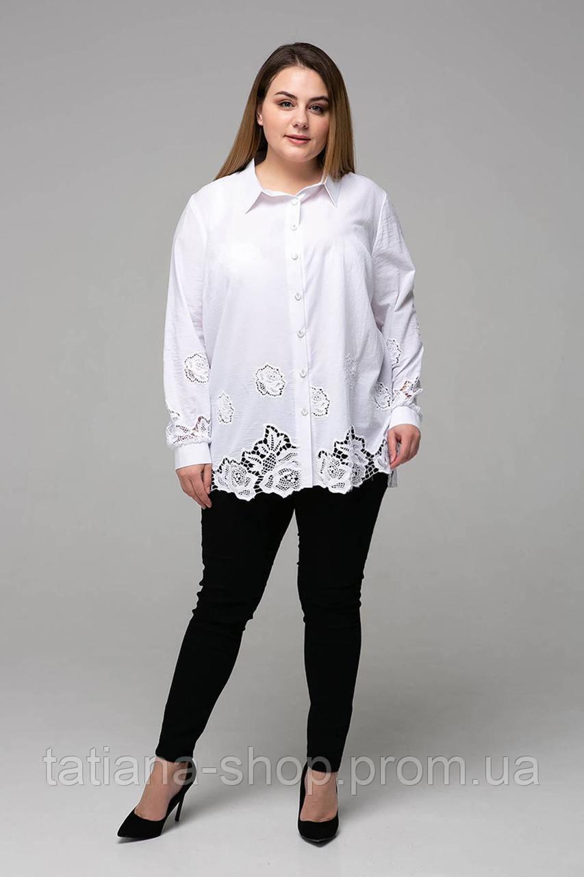 Блуза с прошвой ТАТА белая, фото 1