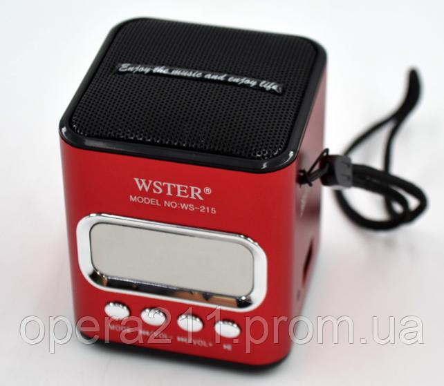 Bluetooth колонка WSTER WS-215