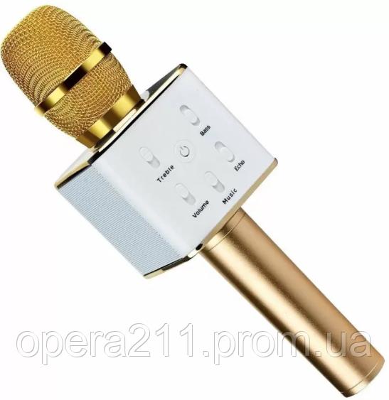 Колонка с функцией Караоке Микрофона WSTER WS-Q9 (USB, microSD, AUX, фото 1