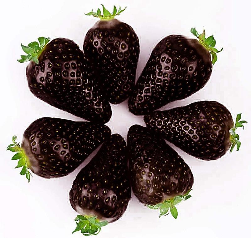 Egrow 200 PCS Black Strawberry Семена Свежее экзотическое вкусное фруктовое горшечное семя Сад Бонсай Растение - 1TopShop
