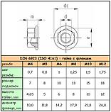 DIN 6923 (ISO 4161) : нержавеющая гайка с фланцем, фото 7