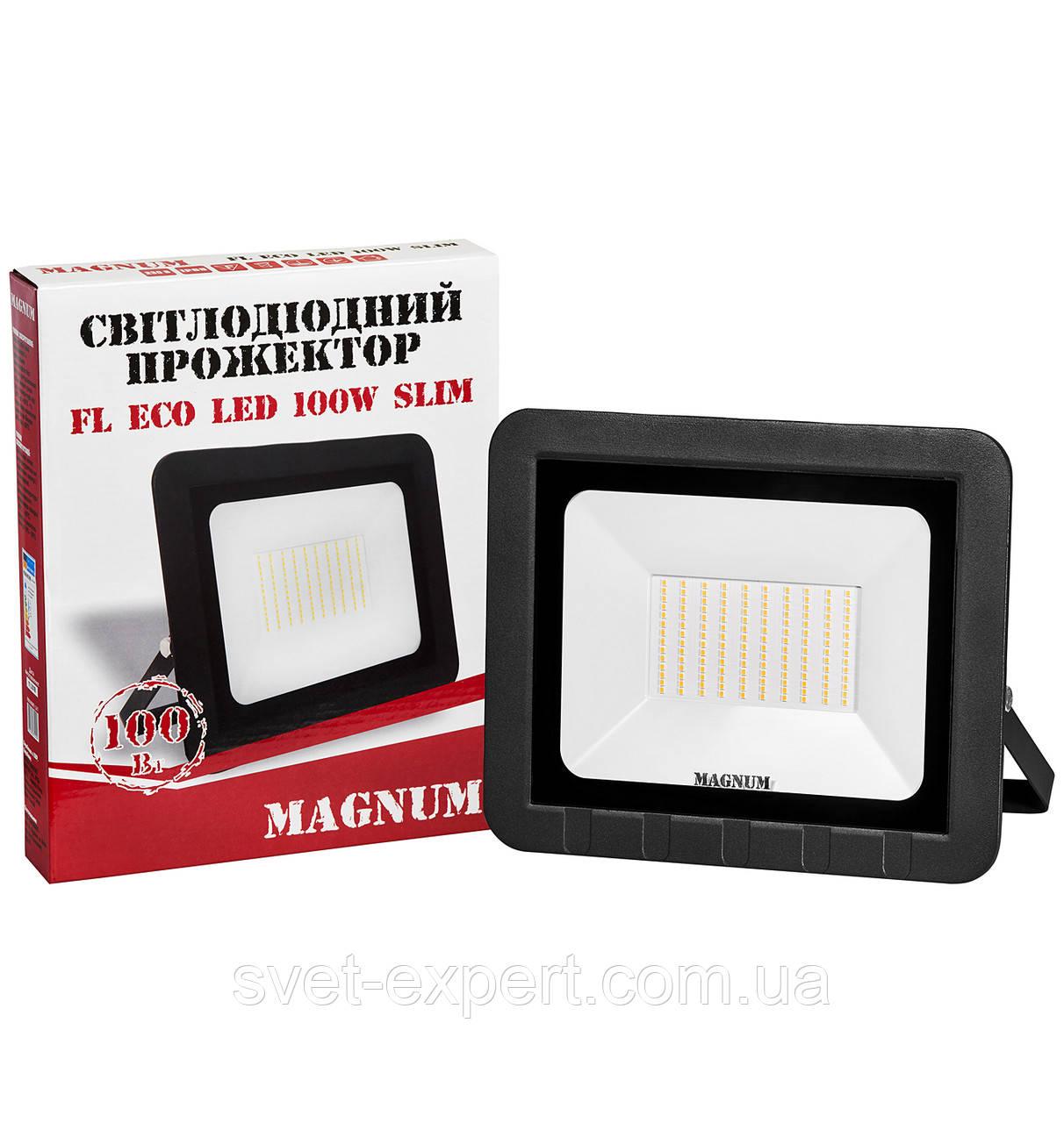 Прожектор MAGNUM FL ECO LED 100Вт 6500К IP65