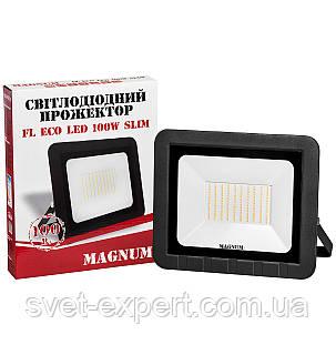 Прожектор MAGNUM FL ECO LED 100Вт 6500К IP65, фото 2