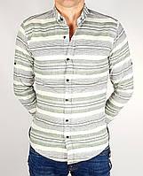 Рубашки Бренд trico Мужской Бледно-бирюзовый 95% коттон 5% эластан арт.9216 L(р)