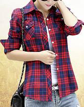 Женская рубашка Ruddy AL7712