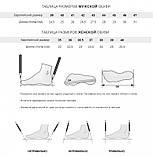 Мужские кроссовки Adidas Alpha Bounce gray white, фото 6