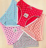 Трусики-плавки детские для девочек хлопок Donella Турция размер S (1-3 года)