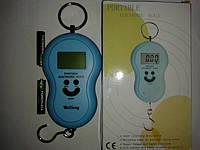 Электронные цифровые весы кантер (до 45 кг)