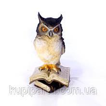 Статуэтка Филин малый на книгах 8*8*15 Гранд Презент 02-90104A