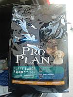 Корм PRO PLAN® PUPPY LARGE BREED ROBUST Курица с рисом для щенков крупных пород 3кг