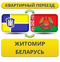 Квартирный Переезд из Житомира в Беларусь!