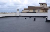 Покрівельні роботи. Ремонт руберойдового  даху., фото 1