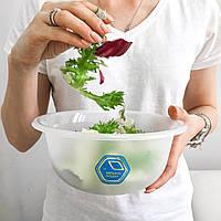 Різновиди зелених листкових салатів.