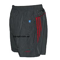 Мужские шорты (плащевка) оптом со склада в Одессе.