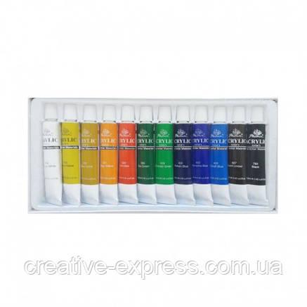 Набір акрилових фарб Фенікс 12кол. x 12мл, фото 2