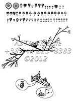 Проводка, кабина, двойная Тормозная педаль С1-1-2-ЕП2, фото 1