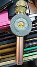 Беспроводной микрофон караоке  Wster WS-668, фото 2
