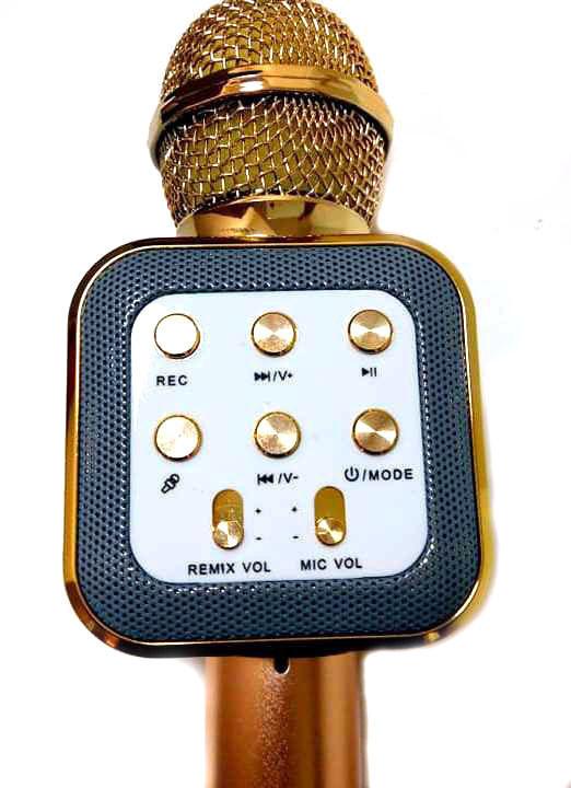 Караоке микрофон wster WS-1818