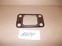 Прокладка турбокомпрессора Д-245, КамАЗ, Д-260 (металлическая), 245-1008016-А