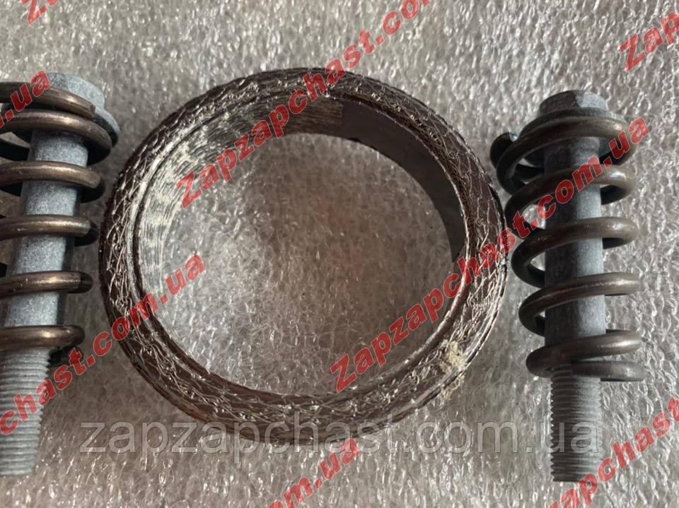 Ремкомплект катализатора Ваз 2110 2111 2112 (меднографитовое кольцо) Пенза