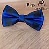 Бабочка взрослая с рисунком BVR-B066