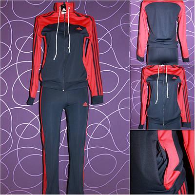 Женский спортивный костюм р-ры 50-52,54-56,58-60,60-62  продажа ... 73795069dc0