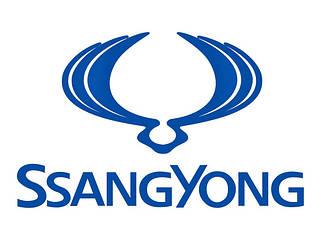 Боковые пороги Ssang Yong