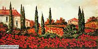 Картина красного цвета для дома Яркие краски прованса