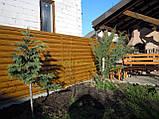 """Блокхаус металевий """"Колода тип 1"""" колір - світле дерево-2-з сторонній, для парканів, фото 6"""
