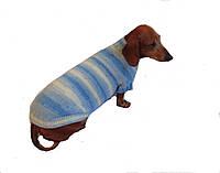 Вязанный свитер для таксы или маленькой собаки