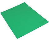 Папка-куточок А4 щільна зелена без логотипу N31153-04, фото 2