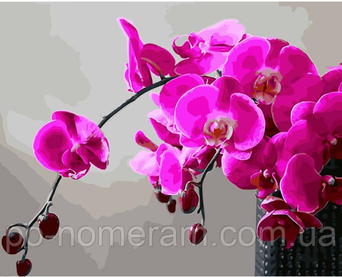 Малювання по номерам Пурпурна орхідея (BK-GX28314) 40 х 50 см (Без коробки)